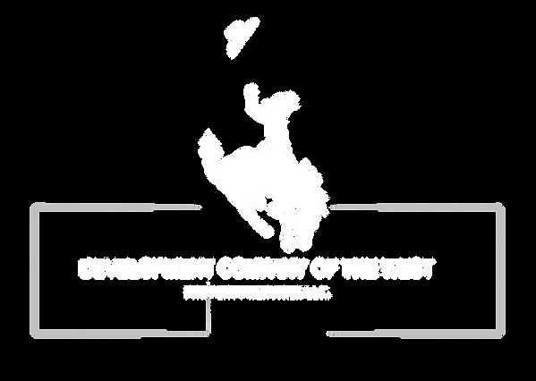 dcw logo white.png