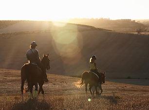 caballos sol.jpg