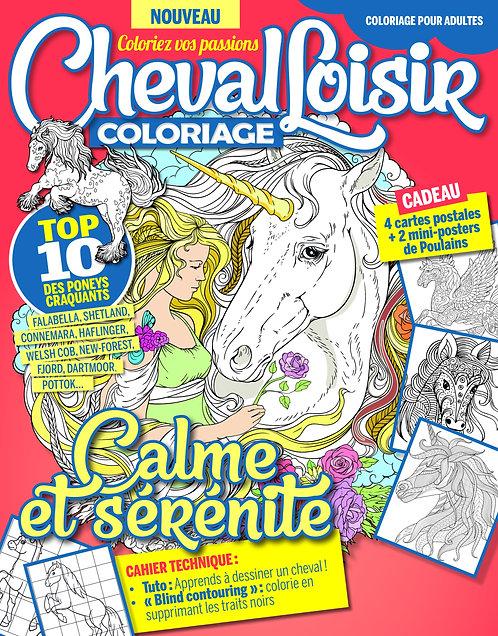 Cheval Loisir n°4