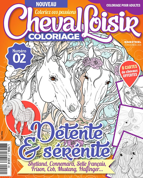 Cheval Loisir n°2