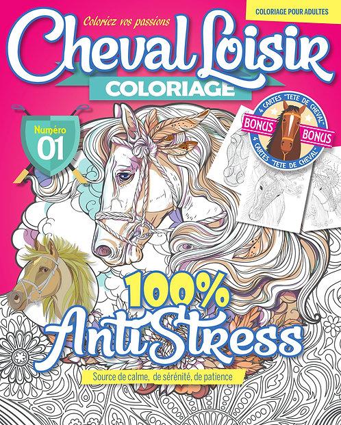 Cheval Loisir n°1