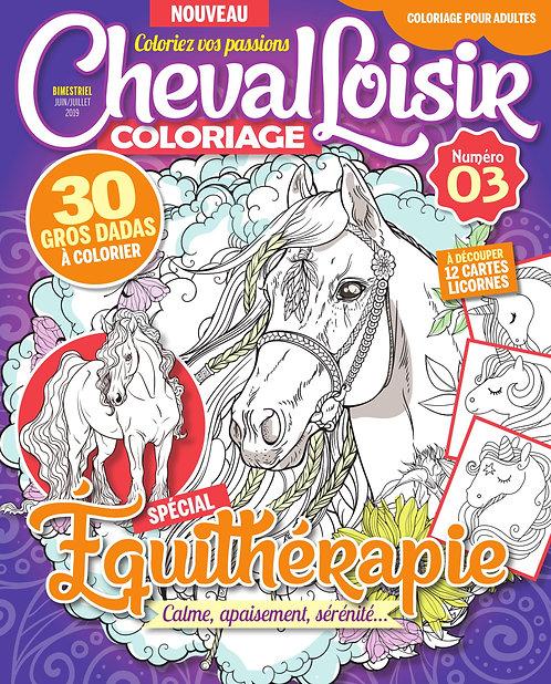 Cheval Loisir n°3