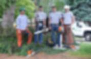 Lawn & Tree Service