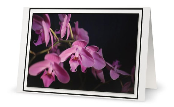 Happy B-Day Wishes ''Purple Orchids''