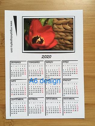 Calendar Magnet ''Red Tulip''