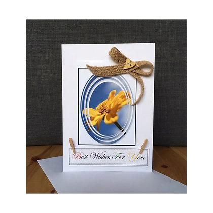 ''Cape Daisy'' Handmade Card