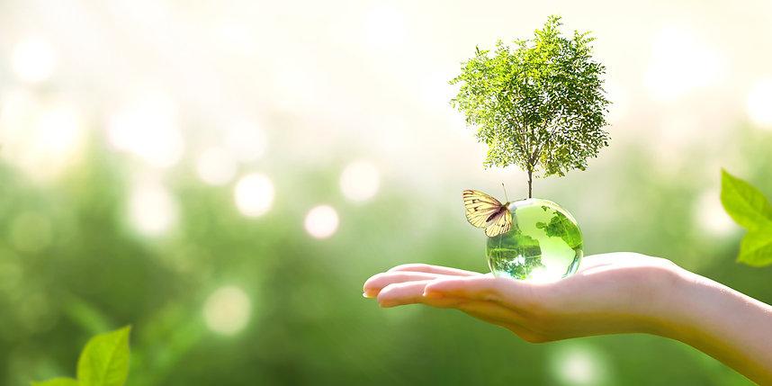 Green-Environment.jpg