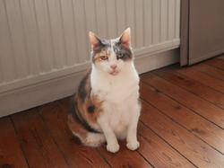 Mistie, 16 ans