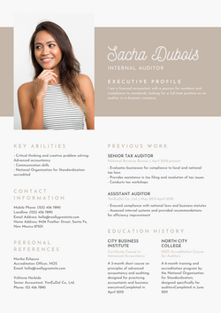 Brown and Gray Flat Design Auditor Busin