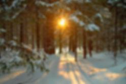 december-solstice-winter-1.jpg