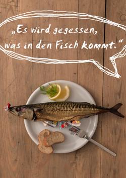 PlakstikImFisch_Plakat6_Schlosser