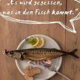 PlakstikImFisch_Plakat6_Schlosser.jpg