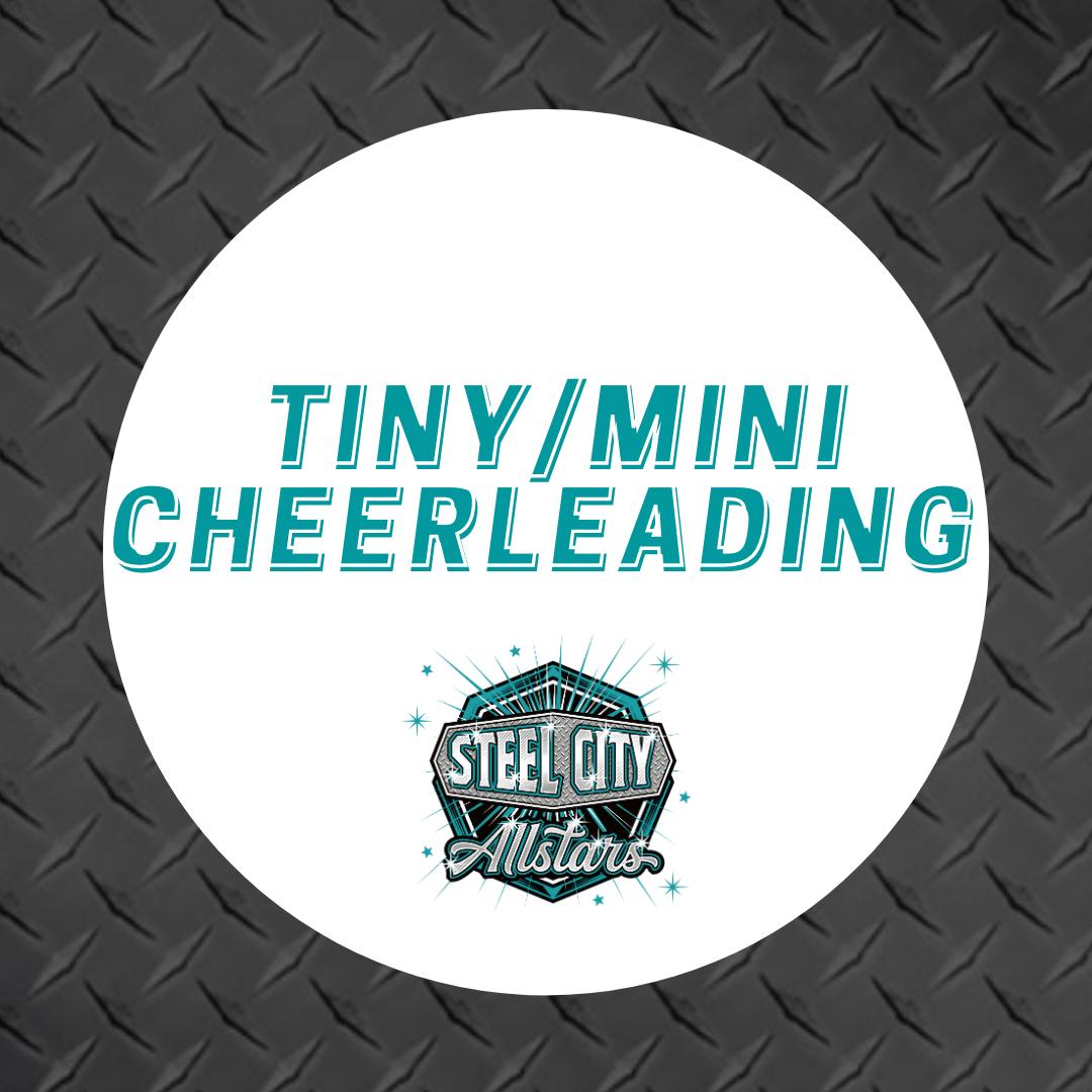 Tiny/Mini Cheerleading Free Taster
