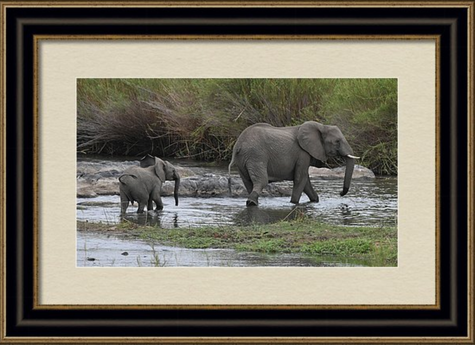 """Follow Me"" Framed Print"