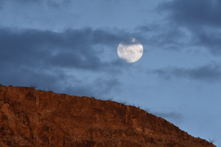 Full Moon Over Ocotillo Lined Cliff