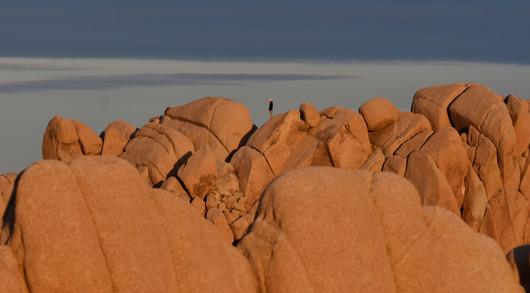 Sunset Light on Jumbo Granite Boulders