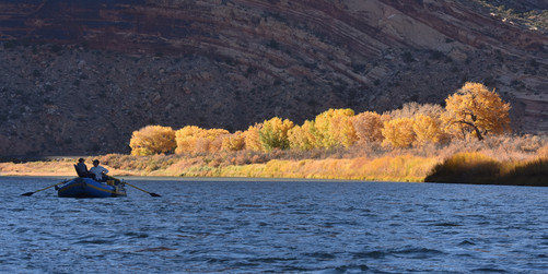 Floating the Colorado River