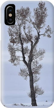 Lone Cottonwood iPhone Case