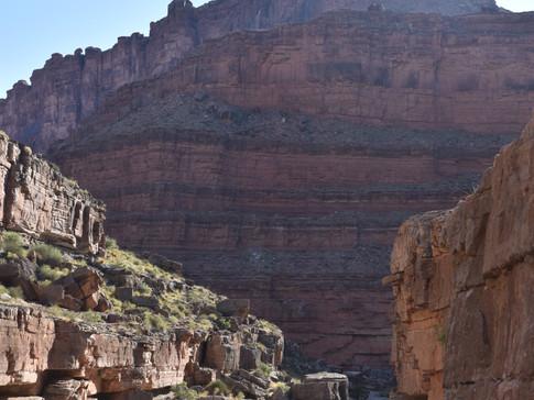 Slickhorn Canyon
