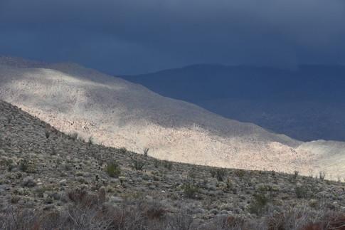 Desert Storm Light