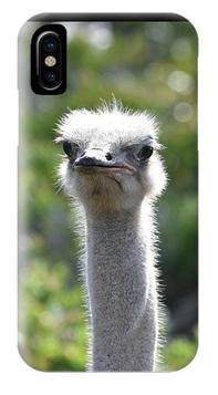 Ostrich Phone Case