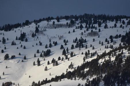 Hillside near Gardiner, Montana
