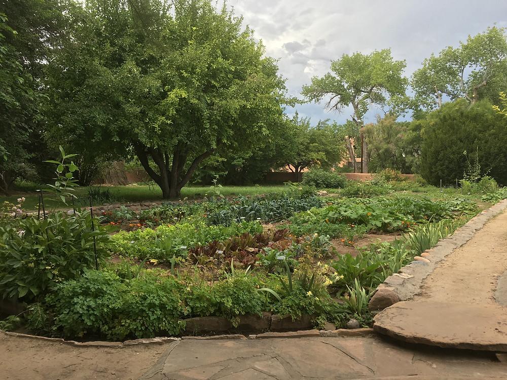 O'Keeffe Garden