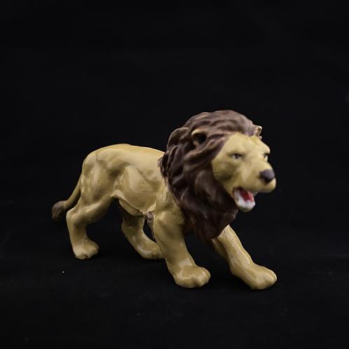 C7. Lion