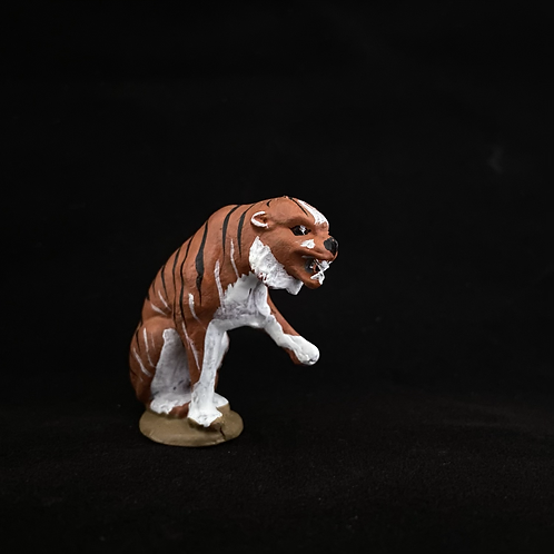 C19. Sitting Tiger