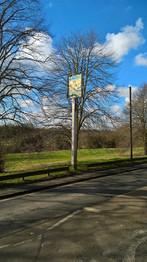 Wheathampstead Folly Fields