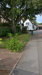 Wheathampstead Scene 9