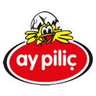 aypilic-wien-logo-2.jpg