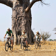 Tafika Camp - cycle safari_2_crop400x400