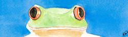 frog_edited