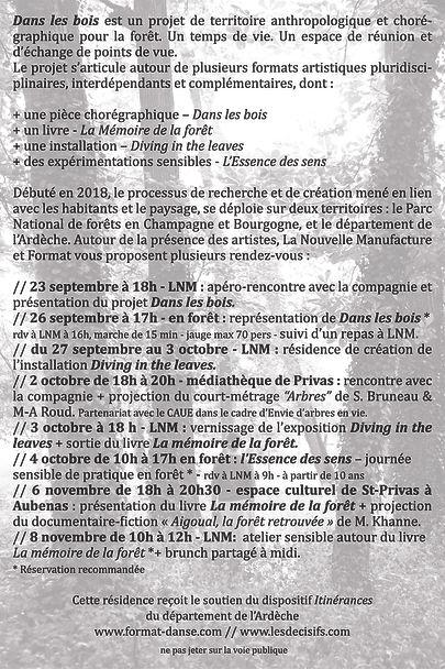 flyer verso Dans les bois.jpg