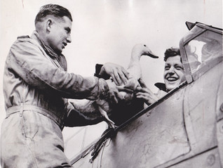 Bill Millington & Squadron Mascot During the Battle of Britain
