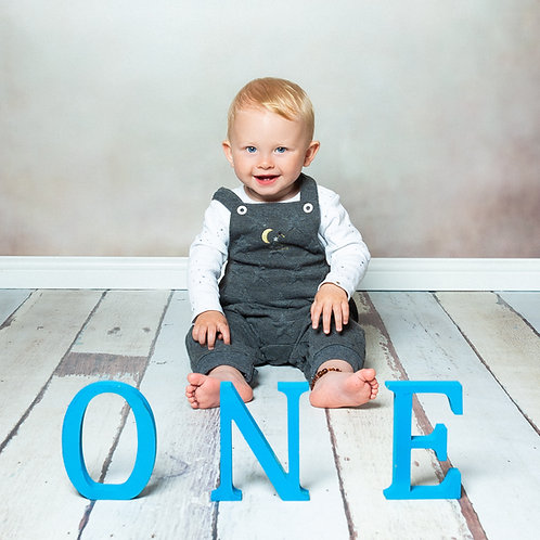First Birthday Photo Shoot + Three Prints