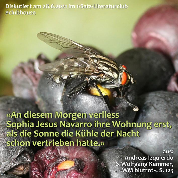 1-Satz-Literaturclub 1SLC Lakritza Judith Niederberger Andreas Izquierdo Wolfgang Kemmer WM blutrot