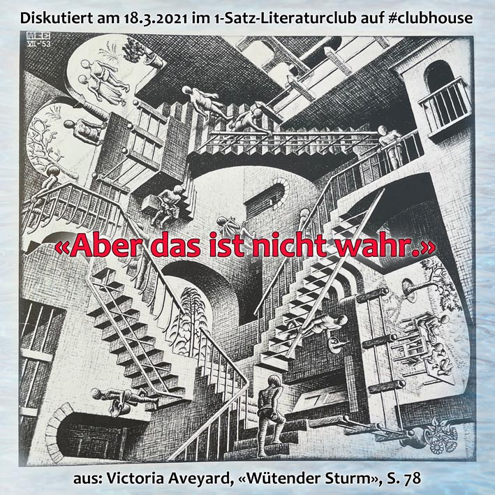 1-Satz-Literaturclub Lakritza Judith Niederberger Victoria Aveyard Wütender Sturm
