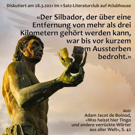 """""""Der Silbador, der über eine Entfernung von mehr als drei Kilometern gehört werden kann, ..."""