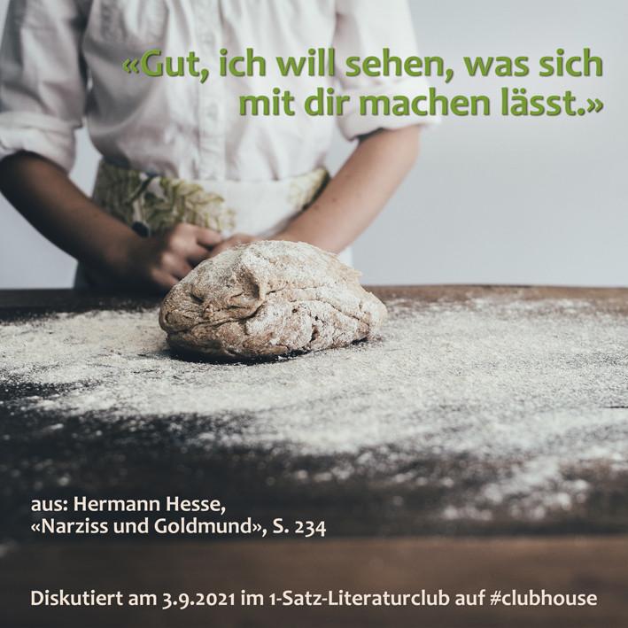 1-Satz-Literaturclub 1SLC Lakritza Judith Niederberger Hermann Hesse Narziss und Goldmund