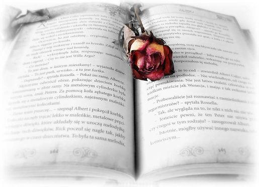 pixabay@Daria_Glodowska_book-419589_sw_w