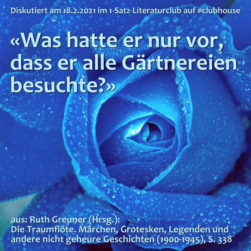 1-Satz-Literaturclub Lakritza Judith Niederberger Ruth Greuner Die Traumflöte