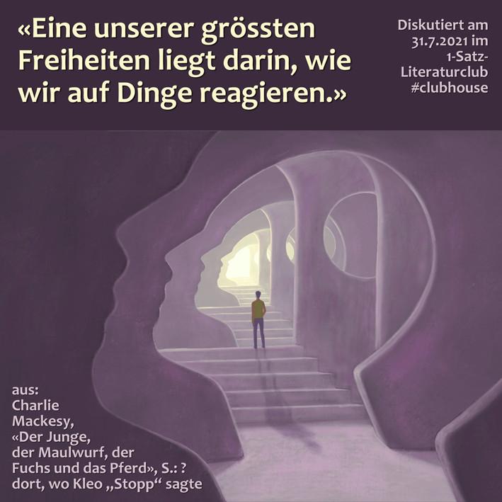 1-Satz-Literaturclub 1SLC Lakritza Judith Niederberger Charlie Mackesy Der Junge, der Maulwurf, der Fuchs und das Pferd