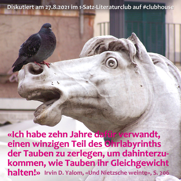 1-Satz-Literaturclub 1SLC Lakritza Judith Niederberger Irvin D. Yalom Und Nietzsche weinte