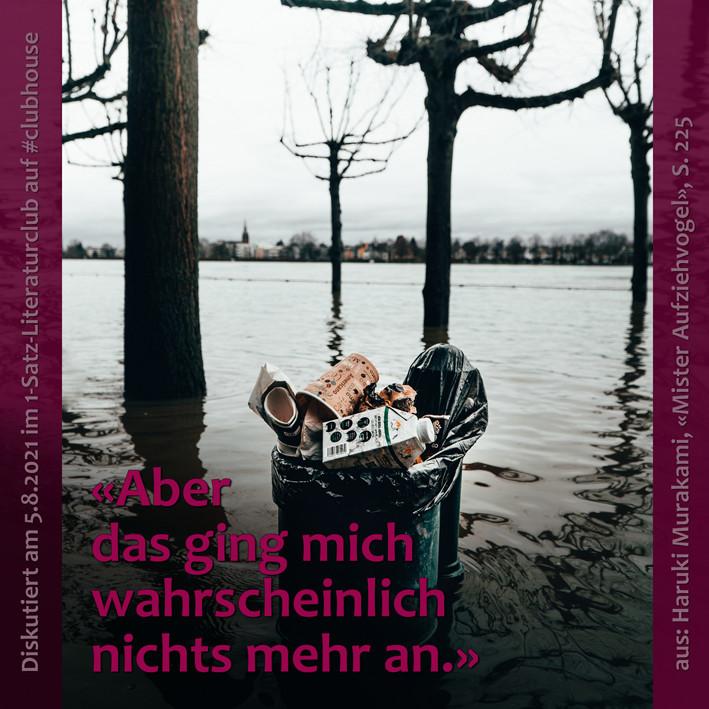1-Satz-Literaturclub 1SLC Lakritza Judith Niederberger Haruki Murakami Mister Aufziehvogel