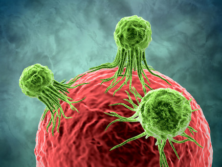 Krebs ist Krieg im Körper