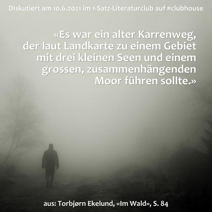 1-Satz-Literaturclub 1SLC Lakritza Judith Niederberger Torbjørn Ekelund Im Wald