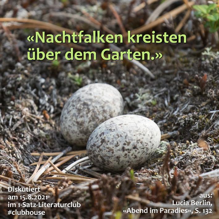 1-Satz-Literaturclub 1SLC Lakritza Judith Niederberger Lucia Berlin Abend im Paradies