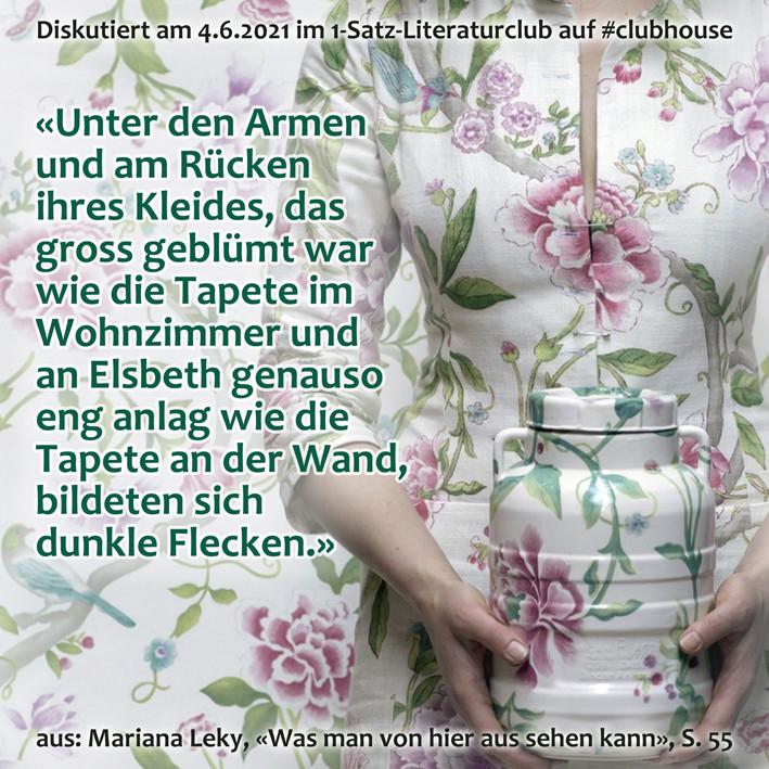 1-Satz-Literaturclub 1SLC Lakritza Judith Niederberger Mariana Leky Was man von hier aus sehen kann